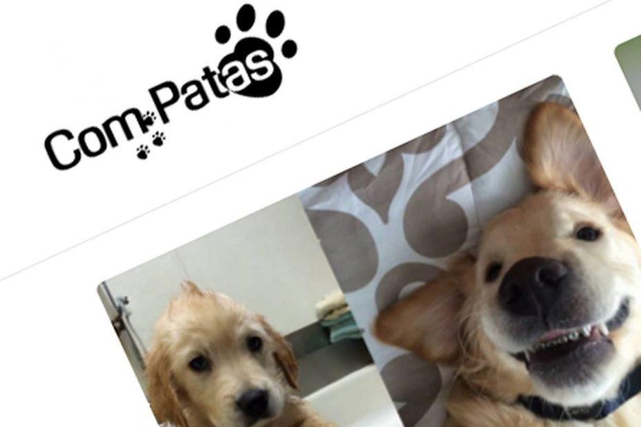 Com Patas Blog de animais, serviço BEHS
