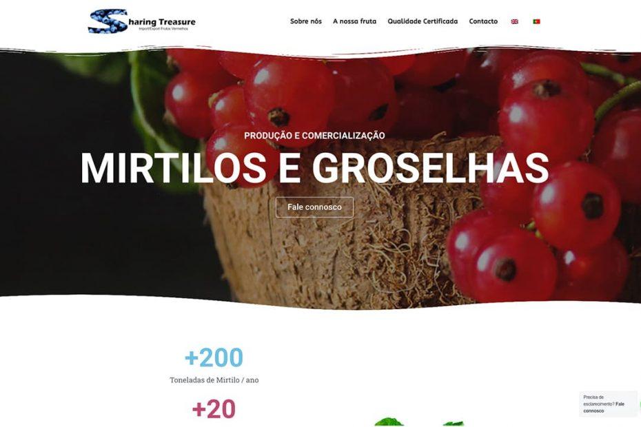 Sharing Treasure Produtores e comercialização de Mirtilos e groselha
